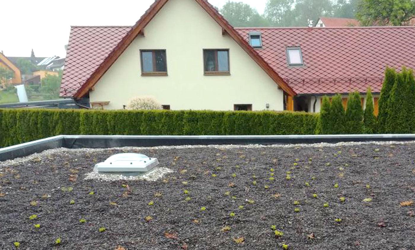 Zimmerei Schmidgall - Dachbegrünung